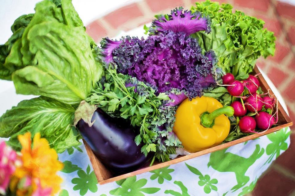 Vegetables 790022 960 720